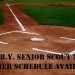 Bayside Yankees Senior Scout Team Summer 2015 Schedule Announced thumbnail