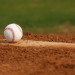 2015 Fall Tryout Information thumbnail